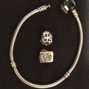 Pandora Bracelet (Charms not included)